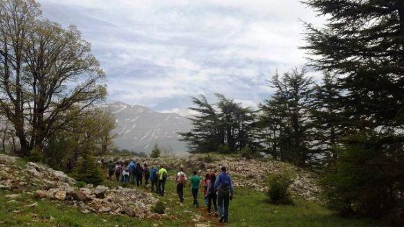 tannourine reserve lebanon hiking-notesofatraveler